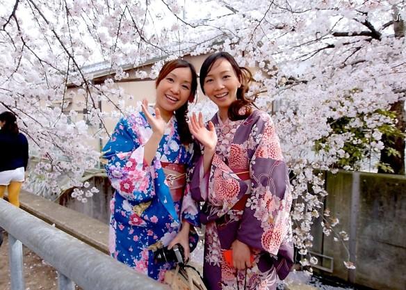 Sakura-in-Kyoto