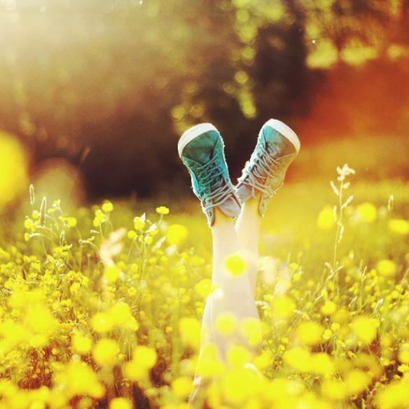 art-converse-legs-nature-Favim.com-845658